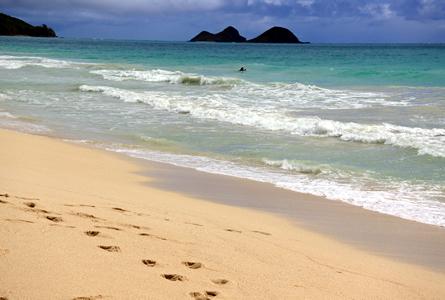 0828 bellows beach